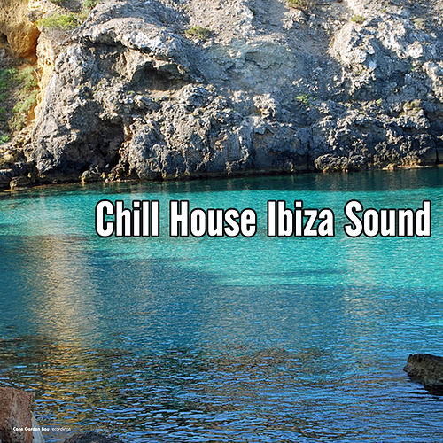Chill House Ibiza Sound by Various Artists