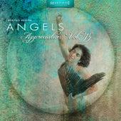 Meritage Healing: Angels (Appreciation), Vol. 15 by Various Artists