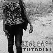 Tutorial de BigLeaf