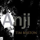 Anji (Unplugged Live) by Tim Barton