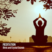 Meditation: Birds and Crystal Sounds by Spa Music (1)