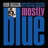 Something Old, Something New, Something Borrowed, Mostly Blue by Ivor Biggun