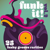 Funk It! 25 Funky Groove Rarities, Vol. 2 by Various Artists