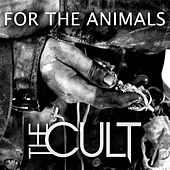 For The Animals - Single de The Cult