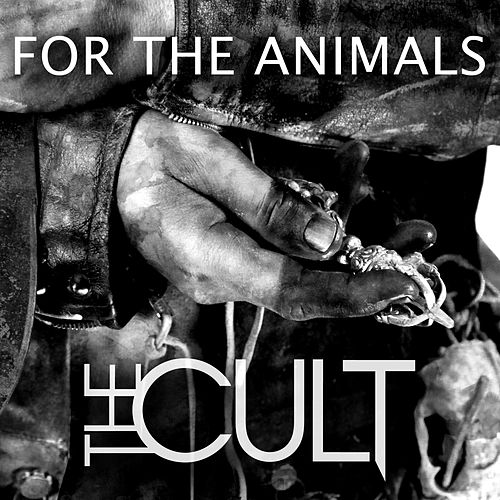 For The Animals - Single by The Cult