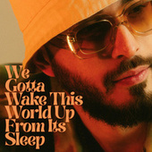 We Gotta Wake This World Up From Its Sleep by Folamour