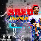 Bred Different by S.I.G Boy Bean