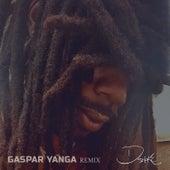 Gaspar Yanga (Remix) di D-Smoke