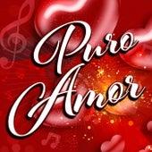 Puro Amor de Various Artists