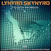 Caught In The Breeze (Live) de Lynyrd Skynyrd