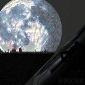 The Moon Cries Too de Pmxnk