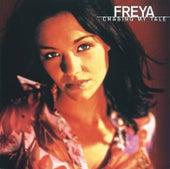 Chasing My Tale de Freya
