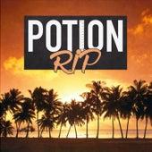 Potion (Radio Edit) von Rip