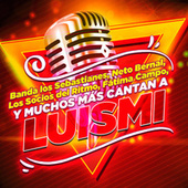Luismi El Tributo de Various Artists