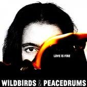 Love Is Fire by Wildbirds & Peacedrums