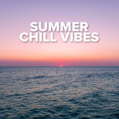 Summer Chill Vibes by Various Artists