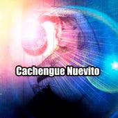 Cachengue Nuevito de Various Artists