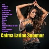 Calma Latino Summer by Various Artists