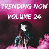 Trending Volume 24 de Various Artists