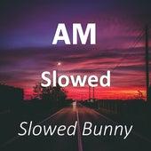 AM Slowed (Remix) de Slowed Bunny