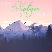 Some Nature Sounds by Various Artists