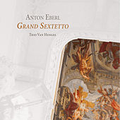 Eberl: Grand Sextetto by Various Artists