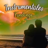 Instrumentales  Fandango von Jimmy De León