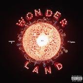 Wonderland by Unknown T