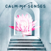 Calm my Senses de Various Artists