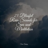 25 Blissful Rain Sounds for Spa and Meditation by Sleep Sound Library