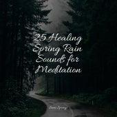 25 Healing Spring Rain Sounds for Meditation de Rainmakers