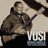 The Collection de Vusi Mahlasela