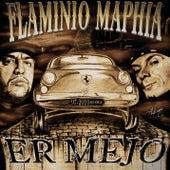 Er Mejo 1997-2010 de Various Artists