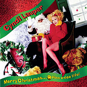 Merry Christmas...Have A Nice Life von Cyndi Lauper