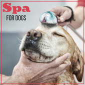 Spa for Dogs: Special Relaxing Music created for Dog Grooming de Ambient Music Therapy