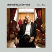 Home Bass fra Stephen Tramontozzi
