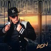 Adn de Kamaleon