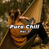 Puro Chill Vol. 1 de Various Artists