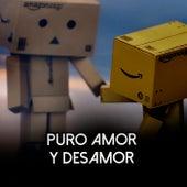 Puro Amor y Desamor de Various Artists