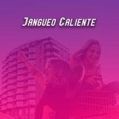 Jangueo Caliente de Various Artists