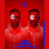 Bloodstream (Lost Frequencies Remix) von twocolors