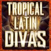 Tropical Latin Divas de Various Artists