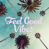 Feel Good Vibes von Various Artists