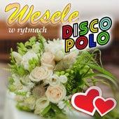 Wesele w Rytmach Disco Polo de Various Artists