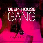 Deep-House Gang, Vol. 2 de Various Artists