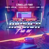 Música pra Ex de Canella Fina