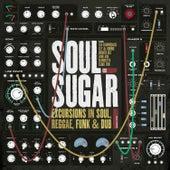Excursions in Soul Reggae Funk & Dub by Soul Sugar