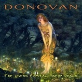 The Living Crystal Faery Realm by Donovan