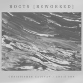 Roots (Reworked) by Christopher Galovan