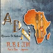 Africain de nature (ADN) fra Paul LeBlanc